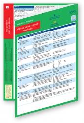 English at a Glance 1 - Các quy tắc về chính tả và dấu câu