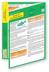 English at a Glance 3 - Khái quát về cách phát âm tiếng Anh
