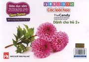 Flashcard Flowers - Các loài hoa