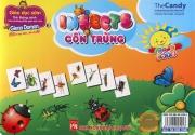 Flashcard Insect - Côn trùng