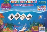 Flashcard Underwater animals - Động vật dưới nước